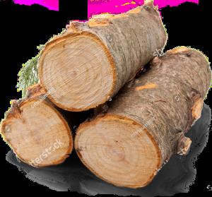 Holzstämme Schreiner Nördlingen